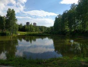 Парк Кольцово