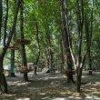 Фото Веревочный парк в Виннице 9