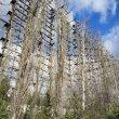 Фото Радиолокационная станция «Дуга» в Чернобыле 9