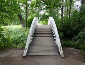 Китайский мостик парка Монрепо