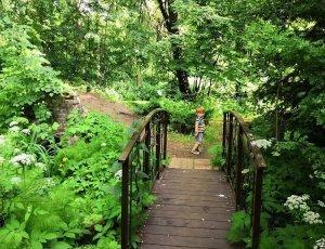 Фото Ботанический сад ТвГУ