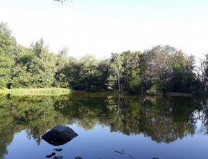 Боянско озеро