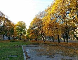 Площадь Александра Килланда