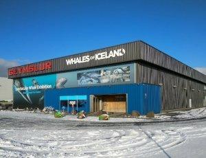 Музей китов