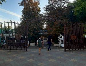Фото Александровский парк