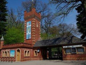Контактный зоопарк «Parc Merveilleux»