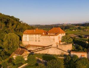 Замок Лаупен