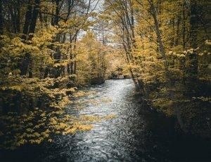 Река Акерсельва
