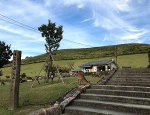 Гора Вакакусаяма