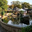 Фото Контактный зоопарк «Parc Merveilleux» 7
