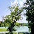 Фото Озеро Мос 9