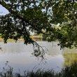 Фото Озеро Эгельмёсли 4
