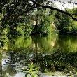 Фото Озеро Эгельмёсли 2
