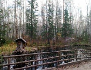 Фото Черняевский Лес
