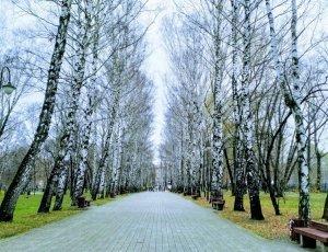 Парк им. В. Л. Миндовского
