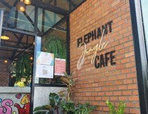 Фото Слоновое кафе в джунглях