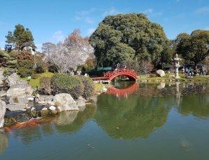 Сад Хапонес де Палермо