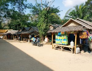 Фото Парк зеленых слонов