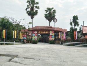 Деревня слонов в Чиангмае