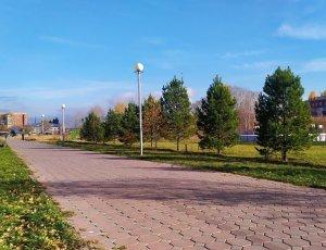 Сад Сибирь
