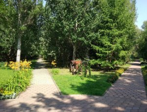 Областной дендрологический сад имени Г.И.Гензе