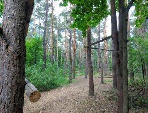 Парк «Кумысная Поляна»