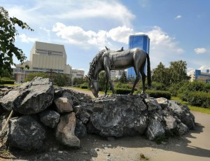 Фото Памятник основателям Красноярска «Лошадь белая»