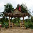 Фото Слоновое кафе в джунглях 9