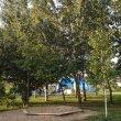 Фото Сквер Дружбы Народов в Омске 7