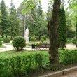 Фото Памятник Пушкину в Кисловодске 4