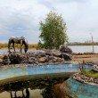 Фото Памятник основателям Красноярска «Лошадь белая» 7