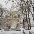 Фото Триумфальная арка цесаревича Николая 7