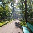 Фото Парк имени Сергея Лазо 5