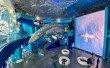 Фото Приморский океанариум 2