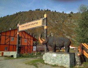 Музей естественной истории «Палеопарк»