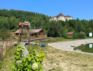 Дендрарий базы отдыха «Алтайское Холмогорье»