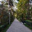 Фото Сосновый парк в Алматы 9
