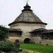 Фото Покровская башня в Пскове 5