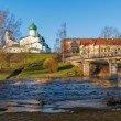 Фото Пешеходный мост через реку Пскову 7
