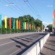 Фото Каменный мост Талицкого 9