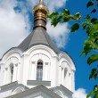 Фото Храм Александра Невского в Звенигороде 8