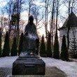 Фото Памятник Преподобному Савве Сторожевскому 7