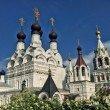 Фото Свято-Троицкий женский монастырь в Муроме 9