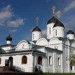 Фото Спасо-Преображенский мужской монастырь в Муроме 5