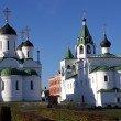 Фото Спасо-Преображенский мужской монастырь в Муроме 8