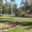 Фото Парк Молодежный в Муроме 7