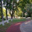 Фото Парк Молодежный в Муроме 9