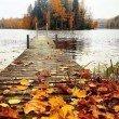 Фото Озеро Тихое в Светлогорске 8