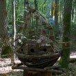 Фото Музей леса в Светлогорске 9