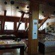 Фото Музей леса в Светлогорске 6